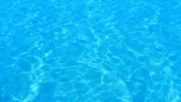 Top view nobody swimming pool with blue water Vector