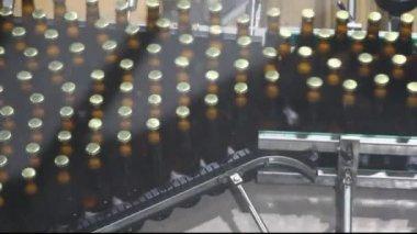 Bier fabriek interieur met een heleboel machines — Stockvideo