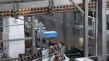 Plastic flessen water op de transportband — Stockvideo