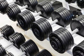 Barbells on a stand — Stock Photo