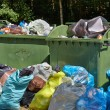 Garbage Containers Full, Overflowing — Stock Photo #70712705