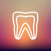 Molar tooth thin line icon — Stock Vector