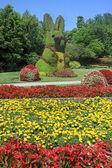 Bunny Topiary — Stock Photo