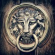Door knocker, handle - lion head. Vintage stylized. — Stock Photo #51923033
