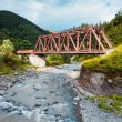 Railroad trestle over river, Carpathians — Stock Photo #52373581