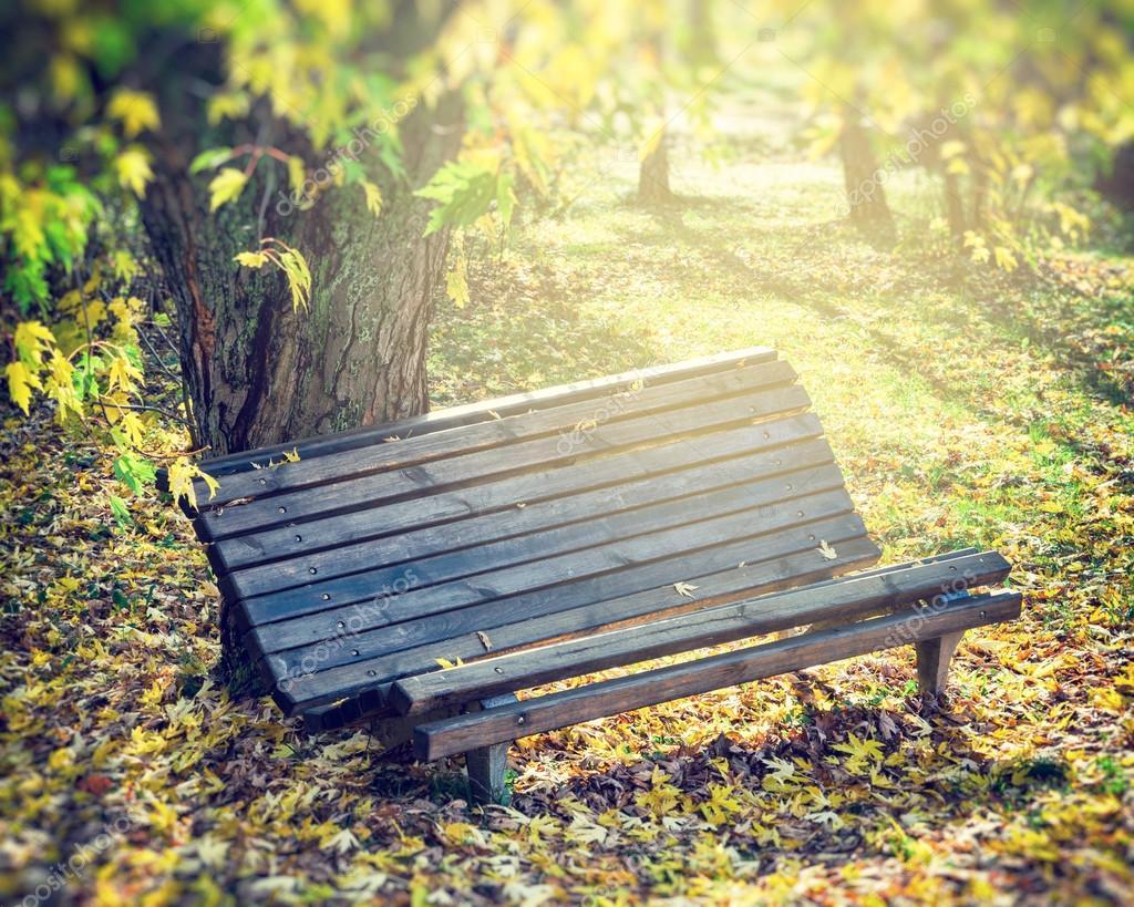 vieux banc de bois dans le parc automne photo 52373559. Black Bedroom Furniture Sets. Home Design Ideas