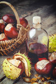 Chestnuts in basket and bottle with tincture — Stock Photo
