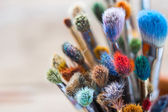 Bunch of artist paintbrushes closeup, selective focus. — Stock Photo