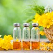 Bottles of healing plants treatment and healthy herbs in basket. — Stock Photo #74165991