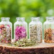 Glass bottles with healing herbs on wooden stump on green backgr — Stock Photo #75335227