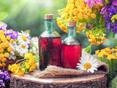 Bottles of tincture or cosmetic product and healing herbs. Herba — Stock Photo