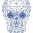 Skull with geometric pattern, vector — Stock Vector #53476333