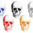 Human skulls, vector set — Stock Vector #54824779