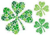 Four leaf clover, vector — Stock Vector