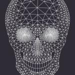 White mesh skull, vector — Stock Vector #64531825