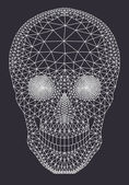 White mesh skull, vector — Stock Vector