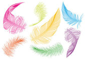 Colorful feathers, vector set — Stock Vector