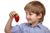 Beautiful caucasian boy looking at ripe strawberries — Stock Photo
