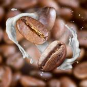 Falling roasted coffee beans with steam and milk — 图库照片