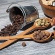 Cardamon, clove and pepper in spoons on wood — Stock Photo #69591703