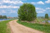 Road on a river coast — Stock Photo