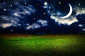 Green field under night sky with moon and stars. Beauty nature b — Stock Photo
