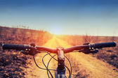 Mountain biking down hill descending fast on bicycle. View from — Stock Photo