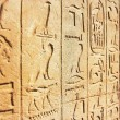 Old Egypt Hieroglyphs — Stock Photo #64467497