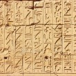 Old Egypt Hieroglyphs — Stock Photo #64467525