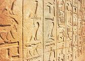 Stary hieroglifów Egipt — Zdjęcie stockowe