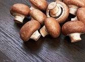Champignon Mushroom — Stock Photo