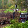 Tractor cleaning up forest debris — Stock Photo #65784915