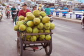 NHA TRANG, VIETNAM - FEBRUARY 11: Vietnamese farmer carry crop of coconut on the night market. Song Cai Embankment, February 11, 2014, Nha Trang, Vietnam. — Stockfoto