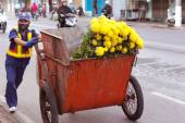 NHA TRANG, VIETNAM - FEBRUARY 11: Unidentified Vietnamese man carries a garbage box with flowers. Song Cai Embankment, February 11, 2014, Nha Trang, Vietnam. — Stockfoto