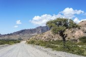Famous Route 40 in Salta, Argentina. — Stock Photo