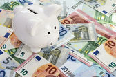 Piggy bank placed on Euro currency — Stock Photo