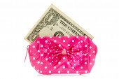Glamour purse with dollar — Stock Photo
