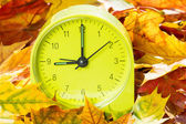 Alarm clock on autumn leaves — Stock Photo