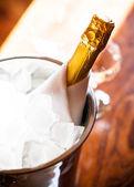 Butelka schłodzonego szampana — Zdjęcie stockowe