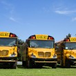New School Buses — Stock Photo #56281717