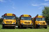New School Buses — Stock Photo