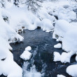 Nonfreezing stream in winter forest — Stock Photo #65824045