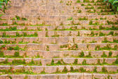 Mossy stone staircase — Stock Photo