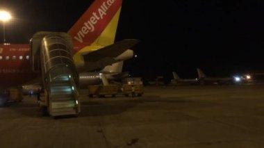 Serviços técnicos verificam um avião chegou — Vídeo stock