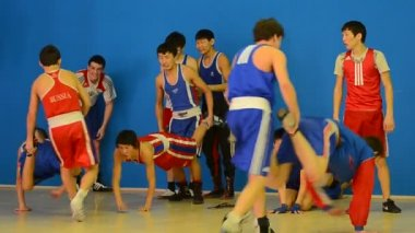 Boxers train running back — Stockvideo