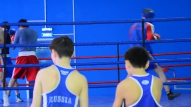 Training of boxing team — Stock Video