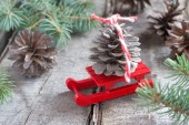 Pine cone on sled — Stock Photo