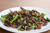 Fried edible insects mix on white plate  — Foto de Stock