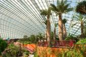 Interior of the Flower Dome a central attraction at Gardens by t — Stock Photo