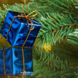 Branch of Christmas tree with gift box — Stock Photo #59906623